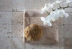 El lavarse auténtico encima de la aún-vida con la esponja natural, endecha del plano Foto de archivo libre de regalías