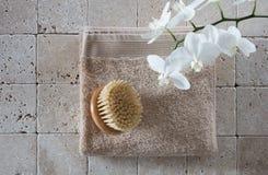 El lavarse sano encima de aún-vida con el cepillo sueco del cuerpo Imágenes de archivo libres de regalías