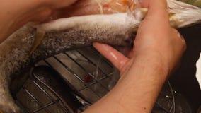 El lavarse y limpieza de pescados almacen de video