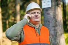 El leñador con el teléfono celular cerca marcó el árbol en bosque Imágenes de archivo libres de regalías