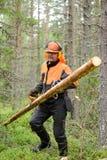 El leñador Worker lleva los ganchos especiales derribados de los registros Imágenes de archivo libres de regalías