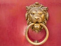El león principal golpea en la puerta roja Imágenes de archivo libres de regalías
