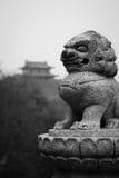 El león y la piedra antigua Fotografía de archivo libre de regalías