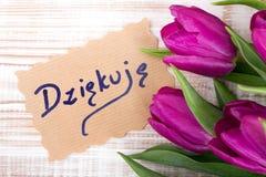El ` le agradece ` del dziÄ™kujÄ™ del ` de la palabra del polaco de la tarjeta del ` y ramo del tulipán Foto de archivo libre de regalías
