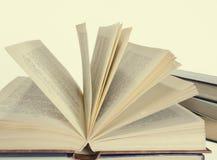 El libro abierto Imagen de archivo libre de regalías