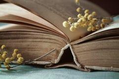 El libro abierto viejo en la tabla con la pequeña mimosa todavía ramifica - vida de la primavera del vintage Imagenes de archivo