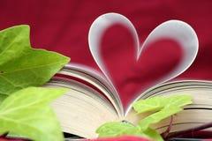 El libro del cierre del amor para arriba Fotos de archivo libres de regalías