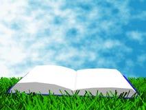El libro en la hierba Foto de archivo