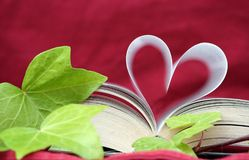 El libro romántico del amor Foto de archivo libre de regalías