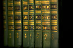El Libro verde en el estante imagen de archivo libre de regalías
