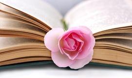 El libro viejo abierto y se levantó Imagenes de archivo