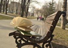 El libro y el corazón quebrado Imágenes de archivo libres de regalías