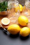 El limón amarillo fresco está listo para juicing fotografía de archivo