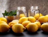 El limón amarillo fresco está listo para juicing imagen de archivo