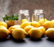 El limón amarillo fresco está listo para juicing imagenes de archivo