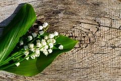 El lirio de los valles florece en fondo de madera con el espacio de la copia Foto de archivo libre de regalías