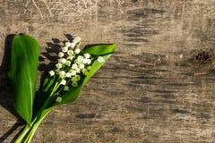 El lirio de los valles florece en fondo de madera con el espacio de la copia Imagen de archivo libre de regalías
