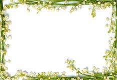 El lirio de los valles florece en horizo aislado la frontera de papel del marco Imagenes de archivo