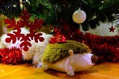 El llevar del erizo de la felpa presentes debajo de un árbol de navidad Fotos de archivo