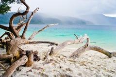 El llover en la playa Fotografía de archivo