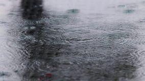El llover en una tabla del parque almacen de video