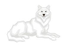 El lobo ártico stock de ilustración