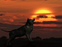 El lobo en puesta del sol stock de ilustración