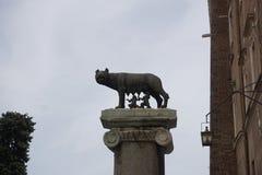 El lobo y los gemelos de Capitoline Imágenes de archivo libres de regalías