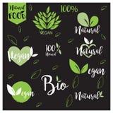 El logotipo natural, bio, fresco, sano de la comida fijó en vector Foto de archivo