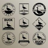 El logotipo original para el pato Carne producida granja Calidad superior Imagenes de archivo