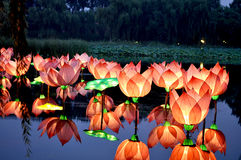 El loto lamp3 Fotografía de archivo