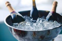 El lujo adornó maravillosamente la tabla de banquete del abastecimiento con el caviar negro y rojo y diversos bocados de la comid Imagenes de archivo