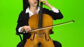 El músico arquea las secuencias de jugar del viololla Pantalla verde almacen de metraje de vídeo