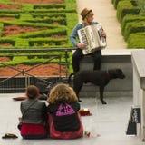 El músico, el perro y la audiencia en las calles de Bruselas Foto de archivo libre de regalías