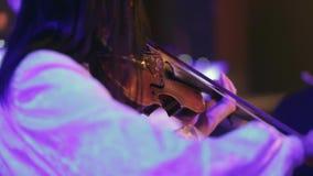 El músico toca el violín almacen de metraje de vídeo
