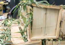 El maíz abarrotó en las cajas para el festival de la comida de la calle en Toronto Fotos de archivo