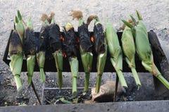 El maíz cocido vendió foto de archivo