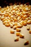 El maíz del grano en pequeño saco Foto de archivo