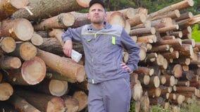 El maderero o el carpintero feliz del trabajador tiene dinero grande cerca de una pila de registros, madera aserrada Concepto de  almacen de metraje de vídeo