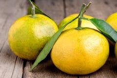 El mandarín maduro con la fruta cítrica del mandarín de la mandarina de las hojas en los agrios de madera del fondo de la tabla s Fotos de archivo libres de regalías