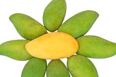 El mango maduro aislado, flores forma concepto aisladas en el fondo blanco fotografía de archivo