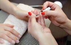 El manicuro pinta clavos con el esmalte de uñas durante el procedimiento de las extensiones del clavo con el gel en el salón de b Foto de archivo