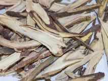 El manojo de glabra del Glycyrrhiza del regaliz en cierre para arriba foto de archivo libre de regalías