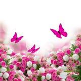 El manojo de rosas y de tulipanes florece con las mariposas Fotografía de archivo