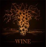 El manojo de uvas para las etiquetas wine en el papel del vintage Fotos de archivo libres de regalías