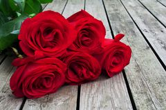 El manojo del rojo o del escarlata de rosas con verde se va en fondo de Fotografía de archivo libre de regalías