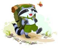 El mapache del explorador con la mochila va a acampar El acampar del verano libre illustration