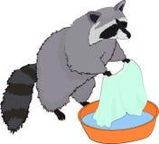 El mapache lindo lava la ropa Ilustración del vector Imagen de archivo