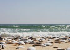 El mar Foto de archivo