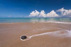 El mar agita la línea del latigazo en la playa de la arena Fotos de archivo libres de regalías